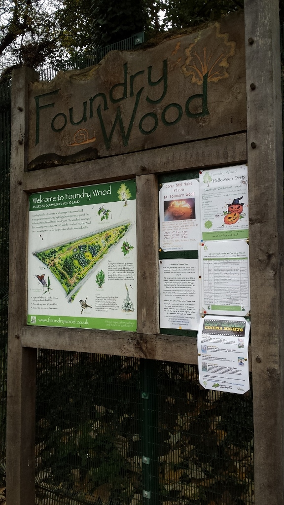 Outdoor Classroom - Foundry Wood